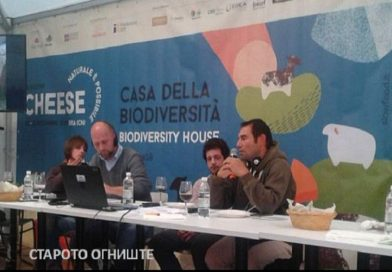 Македонското биено сирење претставено на Cheese 2019 во Бра, Италија